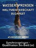 FINA Schwimm-WM in Budapest (HUN) - Synchronspringen - Qualifikation 3m-Brett (w)