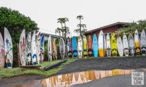 Surfboard Maui