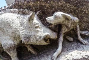 Sassetta Wildschwein