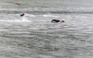 zwei Schwimmer im Freiwasser